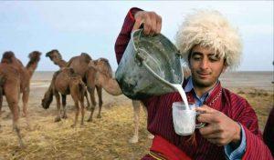 دوغ شتر
